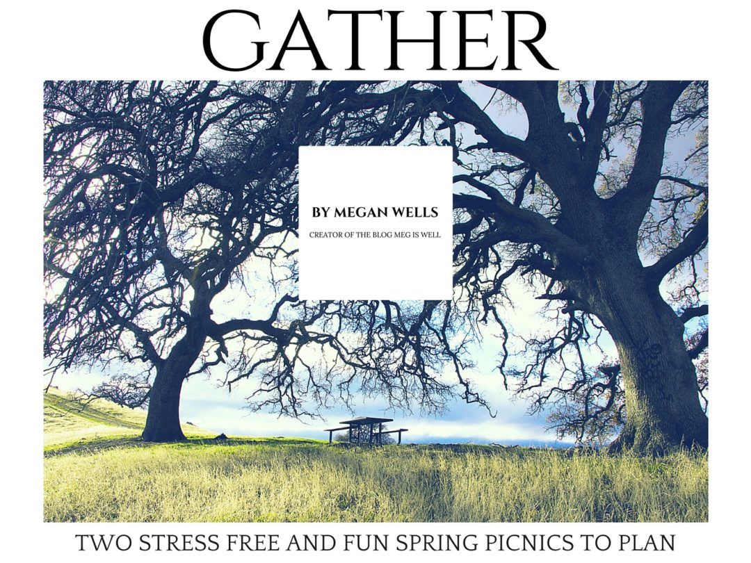 Picnics: A Time to Gather | www.megiswell.com