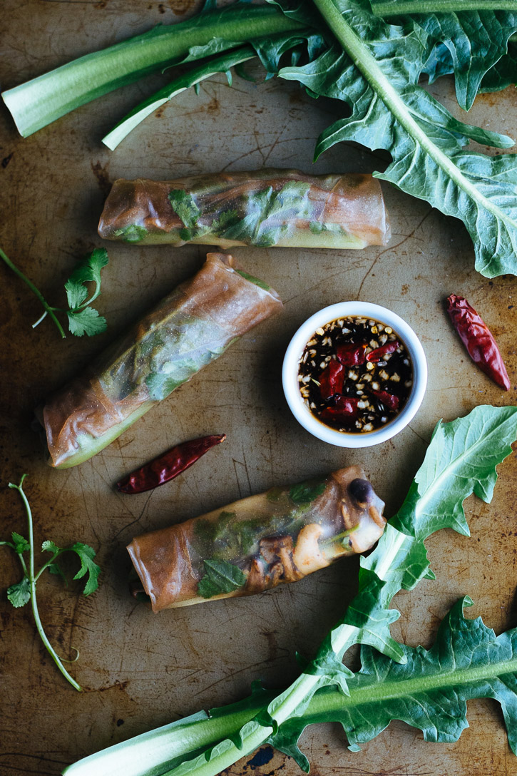 Overhead shot of three wrapped brown rice spring rolls surrounded by cilantro, dandelion greens, dried chilies and a dipping sauce.