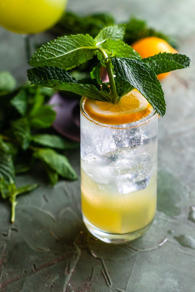 Side shot of a Mint Gin Fizz in a highball glass toped with a sliced lemon that has a sprig of mint pushed through it.