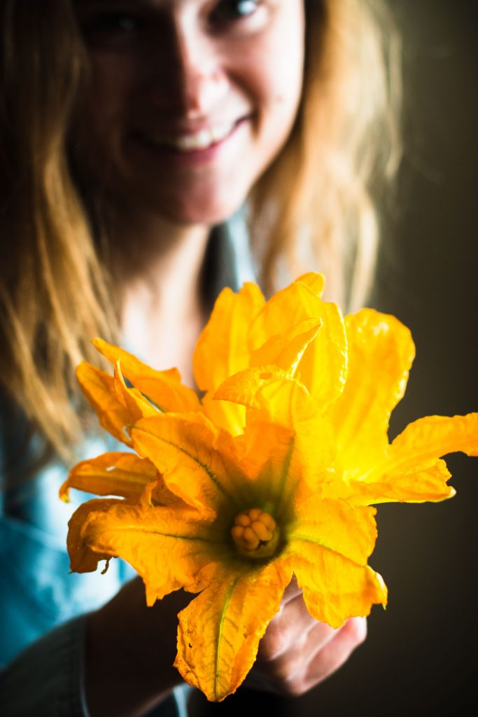 Close up shot of an opened zucchini blossom flower in the hands of a woman.